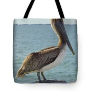 Pelican At The Gulf Tote Bag
