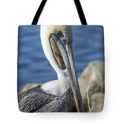 Pelican By The River Tote Bag