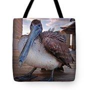 Pelican Close And Low Tote Bag