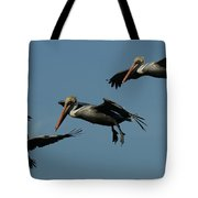 Pelican Collage Tote Bag