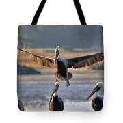 Pelican Coming In For Landing Tote Bag by Dan Friend