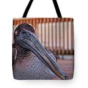 Pelican Eye Tote Bag