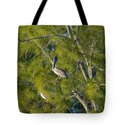 Pelican In The Trees Tote Bag