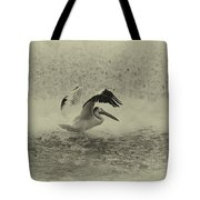 Pelican Landing In Black And White Tote Bag by Thomas Young