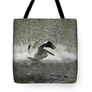 Pelican Landing In Color Tote Bag by Thomas Young