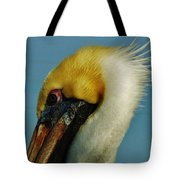 Pelican Mohawk 1/13 Tote Bag