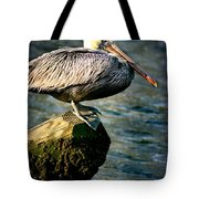 Pelican On A Pole Tote Bag