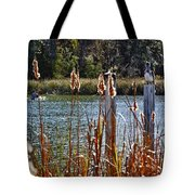 Pelican On A Stick Tote Bag