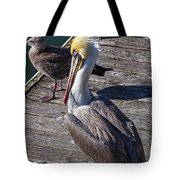Pelican On Dock Tote Bag