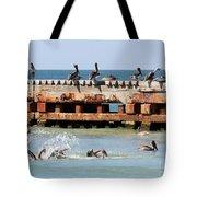 Pelican Pier Tote Bag