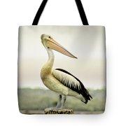 Pelican Poise Tote Bag