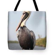 Pelican Pose Tote Bag by Carol Groenen