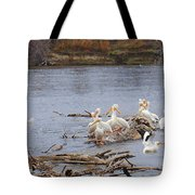 Pelican Rest Stop Tote Bag