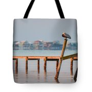 Pelican Sleeping On Sound At Angle Tote Bag