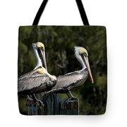 Pelican Threesome Tote Bag