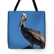 Pelican Watch Tote Bag