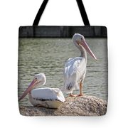 Pelicans By The Pair Tote Bag