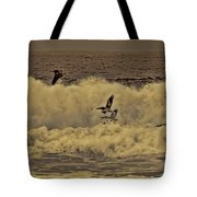 Pelicans In The Surf Tote Bag