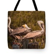 Pelicans On Watch Tote Bag