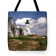 Pemaquid Complex Tote Bag by Skip Willits