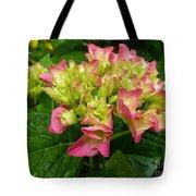 Pending Beauty In The Rain Tote Bag