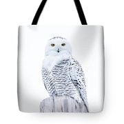 Penetrating Stare Tote Bag