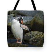 Penguin Ballet... Tote Bag