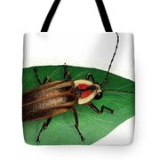 Pennsylvania Firefly Tote Bag