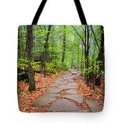 Pennsylvania Hiking Trail Tote Bag