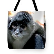 Pensive Monkey Tote Bag
