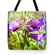 Penstemon On Miles Canyon Trail To Canyon City Near Whitehorse-yk  Tote Bag