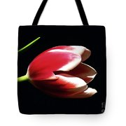 Peppermint Tulip Tote Bag