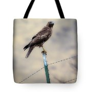 Perched Above Tote Bag