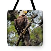 Perched After The Hunt Tote Bag