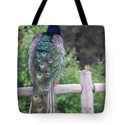 Perched Peacock Tote Bag