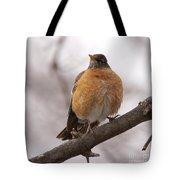 Perched Robin Tote Bag