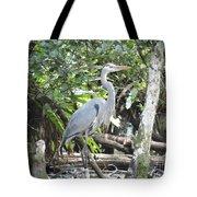 Perching Blue Heron Tote Bag