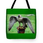 Peregrine Falcon # 1 Tote Bag