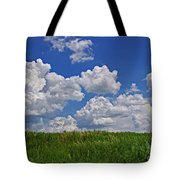 Perfect Day Tote Bag