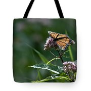 Perfect Monarch Tote Bag