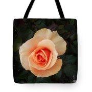Perfect Peach Rose Tote Bag