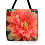 Perfect Petals Tote Bag