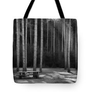 Perfect Picnic Place Tote Bag