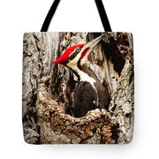 Perfect Pileated Pose Tote Bag