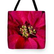 Perfect Poinsettias Tote Bag