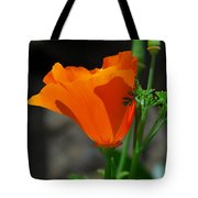 Perfect Poppy Tote Bag
