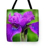 Perfect Purple Specimen Tote Bag