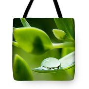 Perfect Raindrop Tote Bag