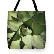 Perfect Symmetry Tote Bag