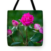 Perfectly Pink 2 Tote Bag
